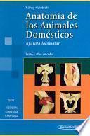 Anatomía de los animales domésticos : texto y atlas en color. 1. Aparato locomotor