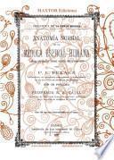 Anatomía Normal de la Médula Espinal Humana Y Algunas Indicaciones de Anatomía Comparada Sobre El Mismo Órgano