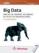 Big Data, Análisis de grandes volúmenes de datos en organizaciones