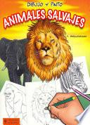 Dibujo y pinto animales salvajes