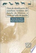 Guia del identificacion de mamiferos terresters del Estado de Mexico, a traves del pelo de quardia