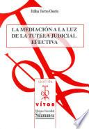 La mediciónm a la luz de la tutela judicial efectiva