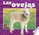 Las Ovejas (Sheep)