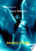 Luz y Sombra 2. Sombra Oculta