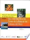 Manual sobre prácticas de producción más limpia: una contibución a la Pymes de la ruta de las culturas del maíz