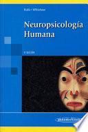 Neuropsicología humana