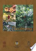 Oferta y potencialidades de un banco de germoplasma del género Theobroma en el enriquecimiento de los sistemas productivos de la región amazónica.