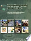 Promoviendo innovaciones con los actores de la cadena y revalorizar la biodiversidad de la papa. El desarrollo y aplicación del enfoque participativo de cadenas productivas (EPCP) en el Perú