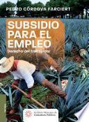 Subsidio para el empleo