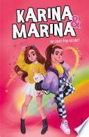 Un plan top secret (Karina & Marina 6)